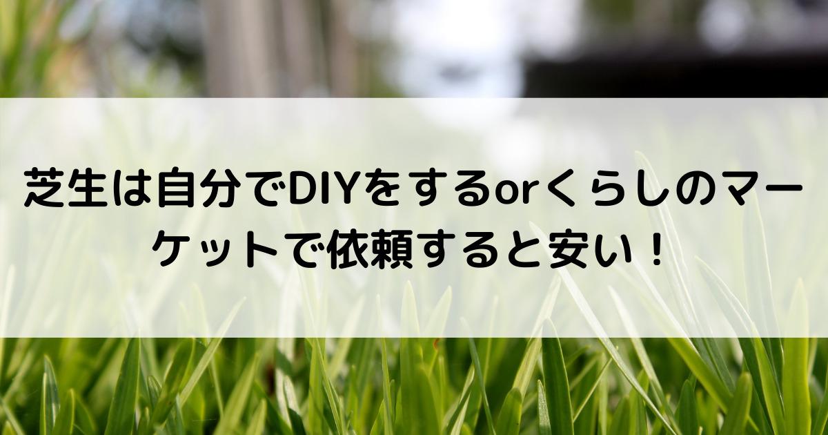 芝生は自分でDIYをするorくらしのマーケットで依頼すると安い!